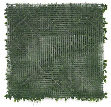Mur végétal Amazone - Verso